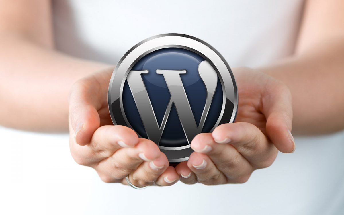 WordPress Site Optimization in 7 Easy Steps