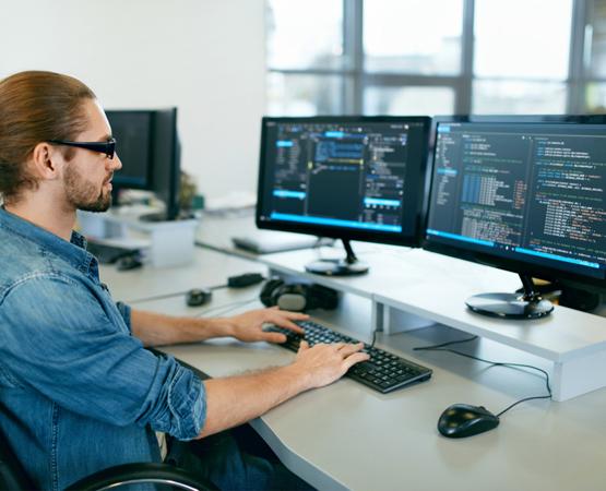Custom Web Application Programmer